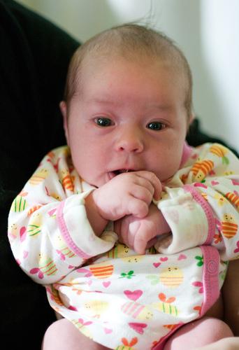 Wilhelmina 2 weeks old
